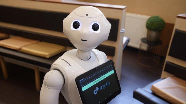 videotanfolyamok kereskedési robotok létrehozásáról)